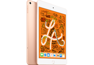 APPLE iPad Mini (2019) Wifi/4G - 256GB - Goud