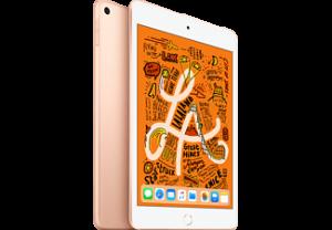 APPLE iPad Mini (2019) Wifi - 256GB - Goud