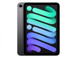 Apple iPad Mini (2021) - 256 GB - Wi-Fi + Cellular - Grijs